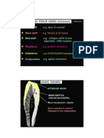 Oral Histology Compendium
