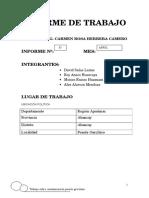Informe de Trabajo Contaminacion Puente Garcilazo
