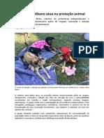 Coletivo Curitibano Atua Na Proteção Animal