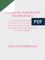 CUADRO_DE_MADURACION_NEUROLOGICA.pps
