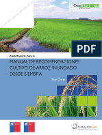 Manual Crop Check Arroz.pdf