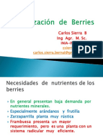 Fertilizacion  de Berries.pdf