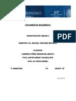 documentos aduaeros.docx