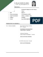 Curriculum_vitae Ortiz Flores