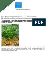 ¿CÓMO SE DEBE UTILIZAR EL ASERRÍN EN EL BIOHUERTO_ _ INFORMACIONES AGRONOMICAS.pdf