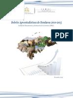 Boletín Agroestadísticas Honduras 2010-2015 II S .pdf