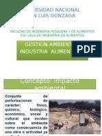 Gestion Ambiental 3 (2) EIA