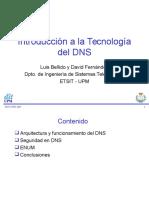 Capacitacion DNS.