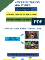 DIAPOSITIVA NRUS 1-GABRIELA.pptx