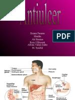 Anti Ulcer