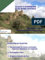 Origem, Evolução e Diversidade Da Caatinga