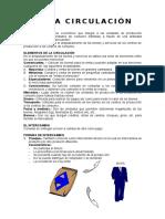 DEFINICIÓN CIRCULACIÓN .docx