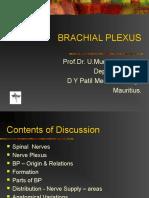 brachial plexus.ppt