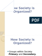 How Society is Organized