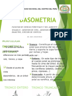 Dasometria Clase II