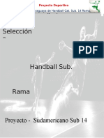 Proyecto Handball Sub 14 2016