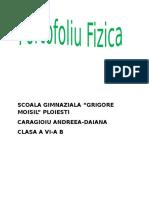 228796956 Manual Fizica Clasa a 6 g