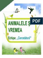 Animalele+si+vremea+stefan
