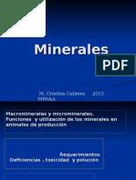 Minerales y Suplementacion 2013