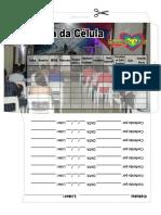 Envelope de Celula 3.Cdr