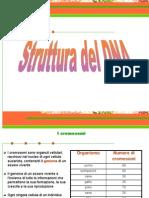il-dna-web-1203430969645752-4 (1)
