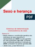 Sexo e Herança