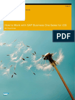 How to Work With the SAP Business One Sales Application En