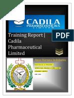 Cadila Industrial Training Report