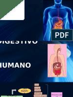 -Anato Fzisio Digestivo