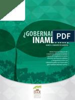 Gobernanza en Inambari Fina