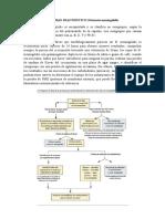 PRUEBAS DIAGNOSTICO Neisseria meningitidis.docx