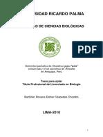 Tesis CespedesC.pdf