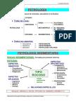 1Conceptos09.pdf