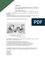 QUESTÕES PARA O SIMULADO.doc