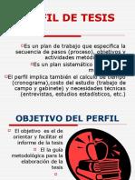 PERFIL+DE+TESIS