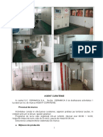 78731152-EVALUARE-RISCURI-PROFESIONALE-Agent-de-Curatenie.docx