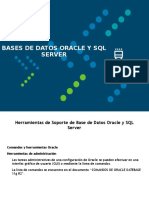Herramientas de Soporte de Base de Datos Oracle y SQL (1)