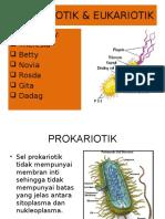 sel-prokariotik-dan-eukariotik1.ppt