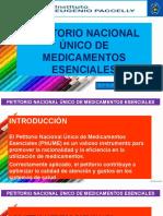 Petitorio Nacional Único Ppt