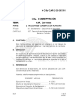 N-CSV-CAR-2-05-007-01.pdf