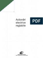1AE actionari electrice