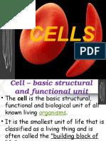 cells  recap   inputs