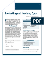 EPS 001 Incubating and Hatching Eggs