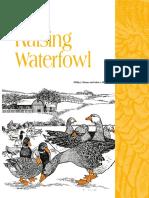 Raising Waterfowl