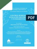 CONTROL BORROSO- EVOLUCIÓN HISTÓRICA Y FUNDAMENTOS