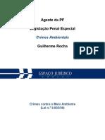 Legislação Especial Penal_Slide 05
