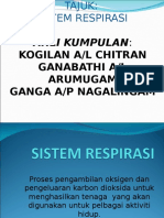 SISTEM RESPIRASI 3.ppt