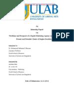 Intenship Report on Digital Marketing Agency