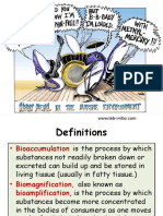 Bio Magnification
