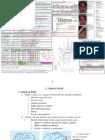 ORTODONTIA - TUDO.pdf
